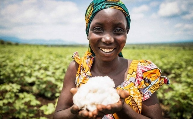 CmiA-cotton-environmental-footprint